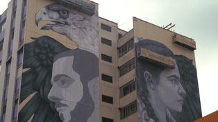 À São Paulo, au Brésil, le festival NaLata permet aux graffeurs de continuer à exercer leur art.  (FRANCEINFO)