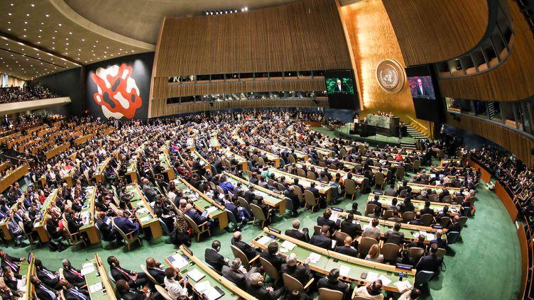 Lors de l'Assemblée générale de l'ONU, à New York, le 19 septembre 2017. (VANESSA CARVALHO / BRAZIL PHOTO PRESS)