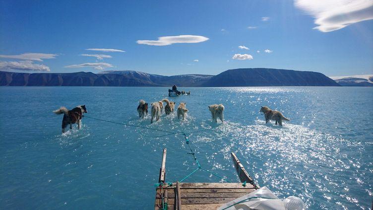 Une équipe de scientifiques a traversé un fjord du Gröenland inondé jeudi 13 juin 2019. (CAPTURE D'ECRAN TWITTER / STEFFEN MALSKAER OLSEN)