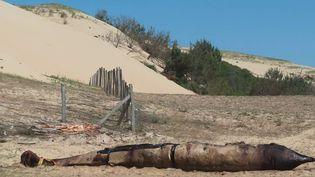 Dans les Landes, une baleine a été retrouvée sur la plage deMessanges. (CAPTURE ECRAN FRANCE 3)