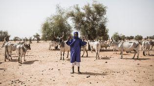 Eleveur peul dans le village de Mbetiou Peulh, le 29 mai 2020. (JOHN WESSELS / AFP)
