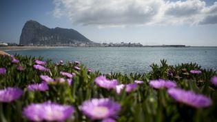 Le rocher de Gibraltar, le 6 avril 2017. (JORGE GUERRERO / AFP)