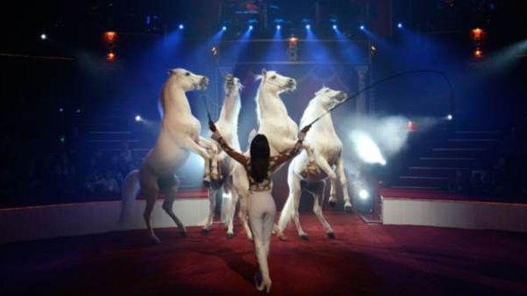 Régina Bouglione et ses chevaux  (DR)
