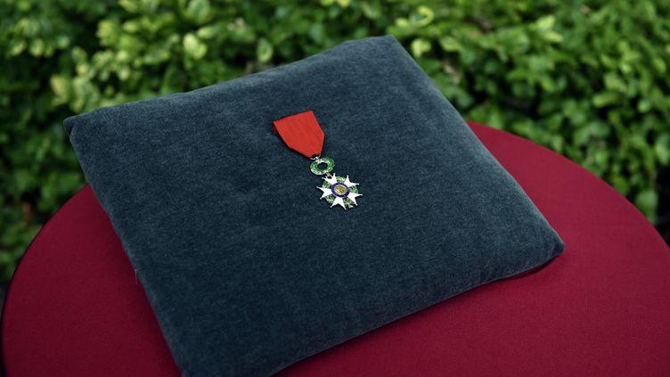 Sardou, Duflo, Eyraud... Qui sont les personnalités distinguées par la Légion d'honneur ?