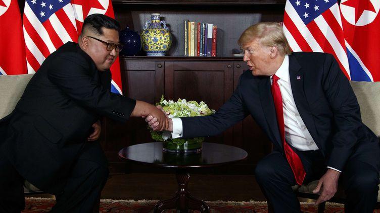 Kim Jong-un et Donald Trump échangent une poignée de main, sur l'île de Sentosa à Singapour, le 12 juin 2018. (EVAN VUCCI / SIPA)