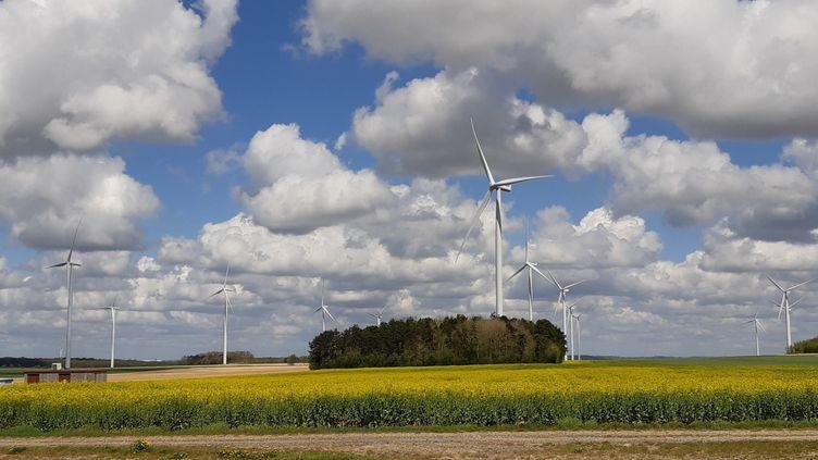 L'un des parcs d'éoliennes de Montagne-Fayel, dans la Somme, mai 2021 (ETIENNE MONIN / FRANCEINFO / RADIO FRANCE)