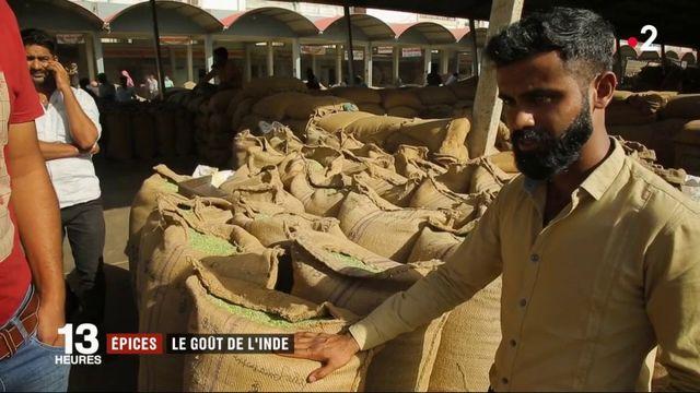 Feuilleton : Inde, la route des épices (2/5)