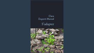 """Livres : """"S'adapter"""", un récit poétique sur l'arrivée d'un bébé dans une famille (Capture d'écran franceinfo)"""