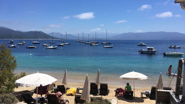 La plage de Porto Pollo en Corse-du-Sud. (FARIDA NOUAR / RADIO FRANCE)