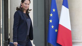 La ministre de l'Energie, Ségolène Royal, le 1er octobre 2014 sur le perron de l'Elysée (Paris). ( PHILIPPE WOJAZER / REUTERS)