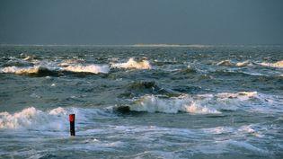 Mer agitée près de l'île de Texel, aux Pays-Bas. (FLIP DE NOOYER / MINDEN PICTURES / AFP)