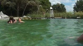 Dans le Limousin, les badauds peuvent profiter d'un lieu de baignade insolite. Une piscine biologique, dont l'eau est filtrée par les plantes, se trouve à Marsac, dans la Creuse. (FRANCE 3)
