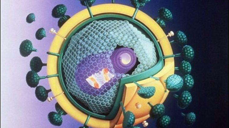 Dessin d'un virus du Sida en mai 1987