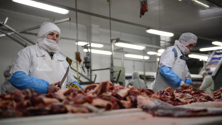 Des ouvriers coupent de la viande dans l'un des abattoirs d'une société roumaine exportatrice de viande chevaline en Europe, le 12 février 2013. (DANIEL MIHAILESCU / AFP)