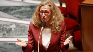 La ministre de la Justice, Nicole Belloubet, prend la parole à l'Assemblée nationale, à Paris, le 29 avril 2020. (LUDOVIC MARIN / POOL / AFP)