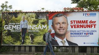 Un homme passe devant les affiches électorales du candidat écologiste Alexander Van der Bellen (à gauche) et du populiste Norbert Hofer (à droite), le 11 mai 2016, à Vienne (Autriche). (HEINZ-PETER BADER / REUTERS)