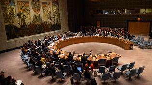 Le Conseil de sécurité des Nations unies lors d'un vote, le 10 décembre 2015, à New York (Etats-Unis). (DON EMMERT / AFP)