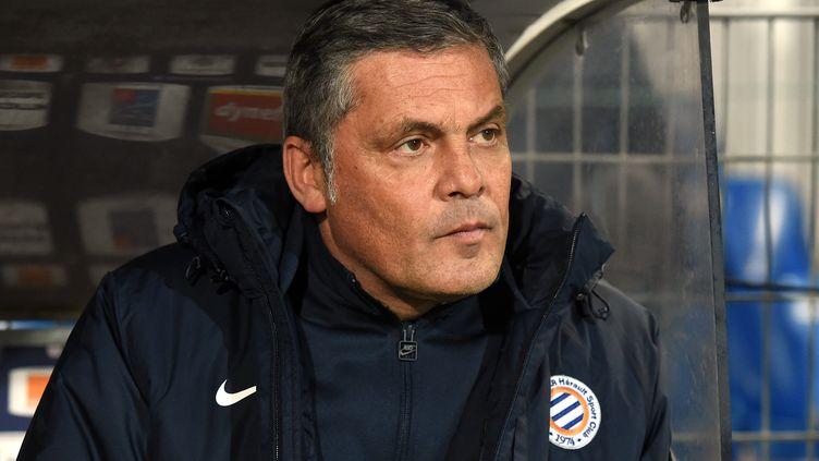 Bruno Martini sur le banc de Montpellier en 2016 (PASCAL GUYOT / AFP)