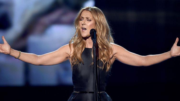 """Céline Dion chante """"L'hymne à l'amour"""" aux AMAs le 22 novembre 2015.  (Kevin Winter / Getty Images / AFP)"""