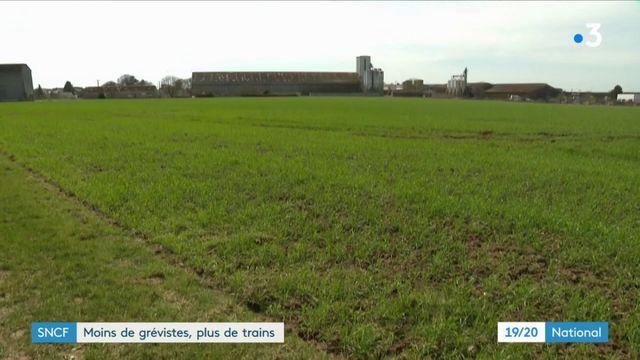 La grève à la SNCF impacte le secteur agricole