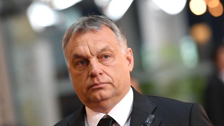 Viktor Orban, Premier ministre hongrois. (SVEN HOPPE / DPA)