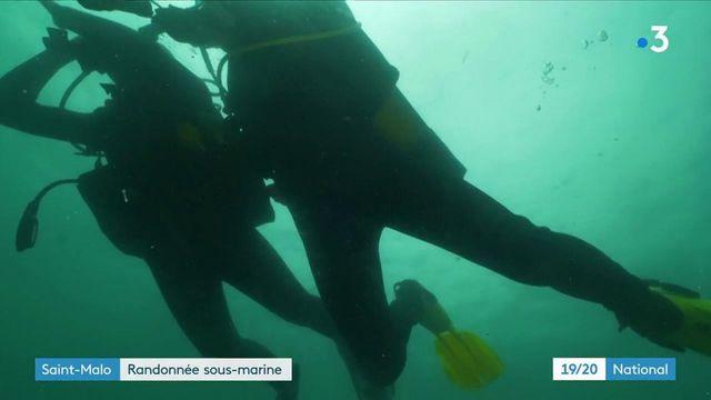 Ille-et-Vilaine : à la découverte des épaves près de Saint-Malo