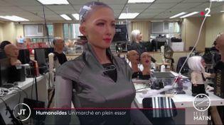 Le robot Sophia. (France 2)