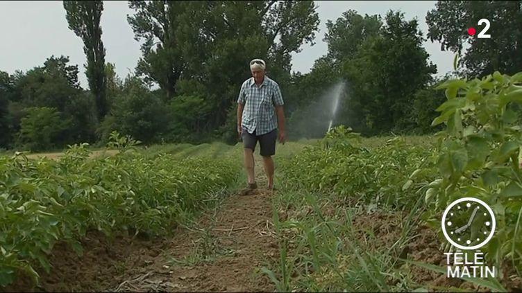 Un agriculteur de la région Occitanie. (France 2)
