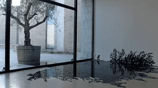 """""""Parcours de l'ombre"""", la nouvelle exposition du musée Chagall de Nice met à l'honneur l'artiste paysagiste Henri Olivier  (France 3 / Culturebox)"""