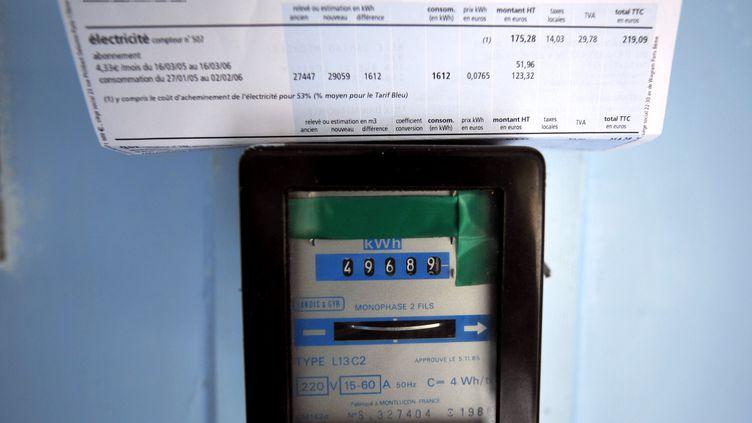 """""""Les tarifs EDF n'augmenteront pas au 1er août prochain"""", a déclaré la ministre de l'Ecologie sur RMC et BFMTV, jeudi 19 juin 2014. (MYCHELE DANIAU / AFP)"""