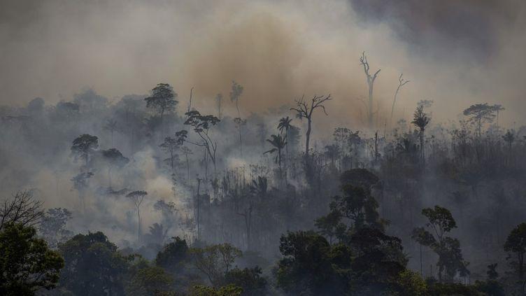 La déforestation, comme ici au Brésil en août 2019, fait partie des combats pour lesquels le plus de défenseurs de l'environnement se sont fait tuer en 2019. (JOAO LAET / AFP)
