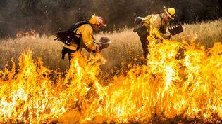 Des pompiers dans le comté de Lake (Californie, Etats-Unis), le 30 juillet 2015. (? MAX WHITTAKER / REUTERS / X02214)