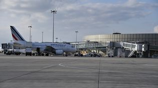 L'aéroport de Toulouse Blagnac, le 17 mars 2015. (PASCAL PAVANI / AFP)