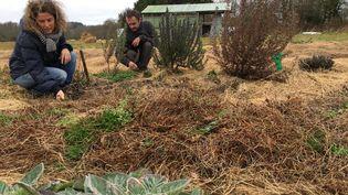 Virginie Philippe et Xavier Richard sur leur exploitation agricole, le 28 mars 2018, dans la ZAD de Notre-Dame-des-Landes (Loire-Atlantique). (RAPHAEL GODET / FRANCEINFO)