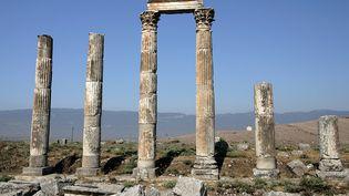 Le site archéologique d'Apamée aurait été largement pillé  (MANUEL COHEN)