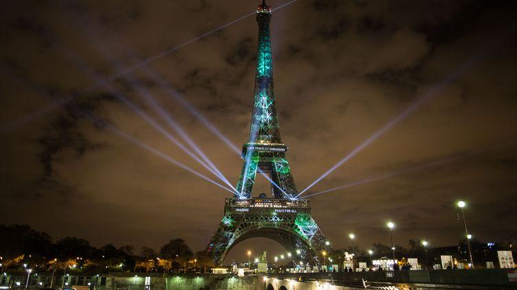 Une photo d'arbres est projetée sur la tour Eiffel, le 29 novembre 2015 à Paris. Il s'agit d'une installation de l'artiste Naziha Mestaoui. (IRINA KALASHNIKOVA / RIA NOVOSTI / AFP)