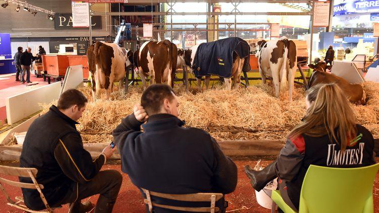 Au Salon de l'agriculture à Paris, le 26 février 2016. (MIGUEL MEDINA / AFP)
