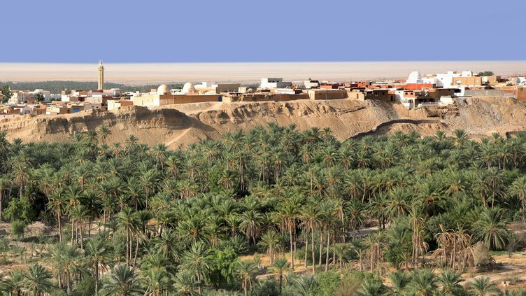 L'oasis de Nefta, non loin de la zone fouillée par l'équipe tuniso-britannique.  (Hervé Gyssels / Photononstop)