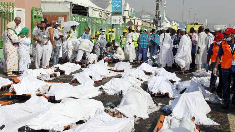 Selon le dernier bilan fourni par la défense civile, le 25 septembre 2015, 717 personnes ont péri et 863 ont été blessées dans la bousculade à La Mecque (Arabie saoudite). (AFP)