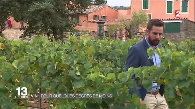 Alcool : des vins avec quelques degrés de moins