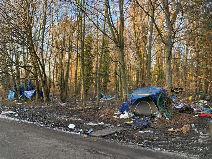 Des tentes installées dans le bois de Grande-Synthe (Nord), le 9 février 2021.  (MATHILDE VINCENEUX / RADIO FRANCE)