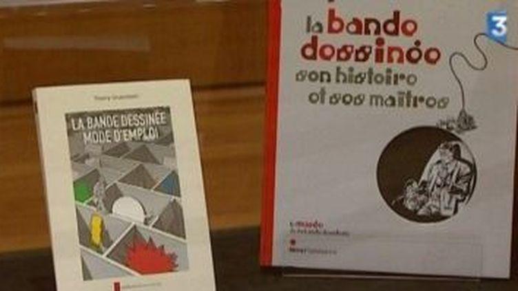 Exposition carte blanche à Thierry Groensteen, spécialiste de la BD  (Culturebox)