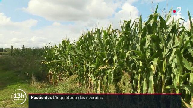 Pesticides : le gouvernement pris entre la peur des riverains, et les craintes des agriculteurs