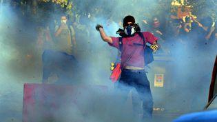 Un jeune homme manifeste au lendemain de la mort d'un opposant au barrage de Sivens, le 27 octobre 2014 à Albi(Tarn). (MAXPPP)