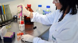 Une chercheuse de l'Institut national de la recherche agronomique (INRA) étudie desperturbateurs endocriniens, le 9 avril 2015, àToulouse (Haute-Garonne). (REMY GABALDA / AFP)