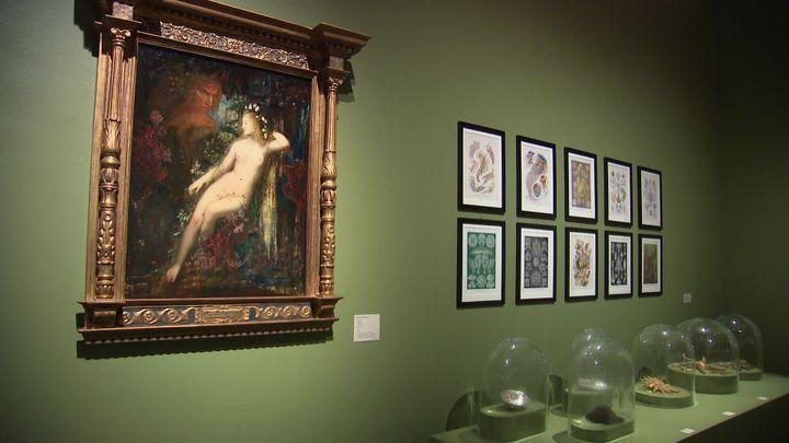 Dix salles aux ambiances très différentes retracent la vie et la carrière de Joris-Karl Huysmans. (France 3 Alsace / V. Roy)