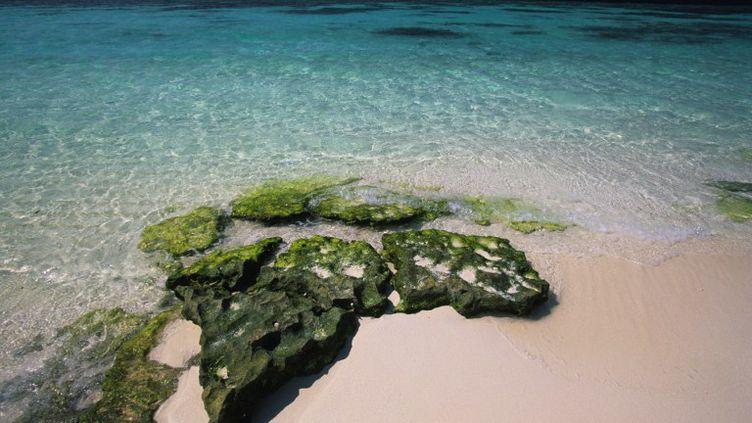 Les plages de l'île Mutha Fuchi, aux Seychelles, le 11 mai 2012. (ANDREA PISTOLESI / TIPS / AFP)