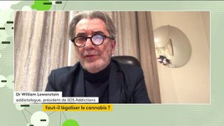 William Lowenstein, président de SOS Addictions, était l'invité du JT de franceinfo canal 27 (FRANCEINFO)