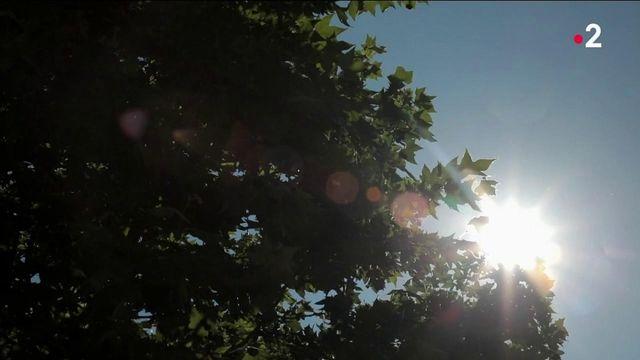 Climat : la sécheresse arrive plus tôt que d'habitude