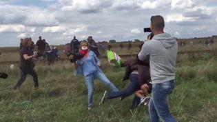 Sur ces images, une journaliste de la chaîne hongroise N1TV fait un croche-pied à un migrant près de la frontière serbe, mardi 8 septembre 2015. (STEPHAN RICHTER / TWITTER)